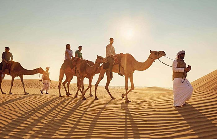 How to Find the Best Abu Dhabi Desert Safari